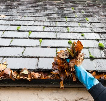 how to clean the gutters yourself
