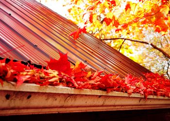 Gutter Maintenance for Winter