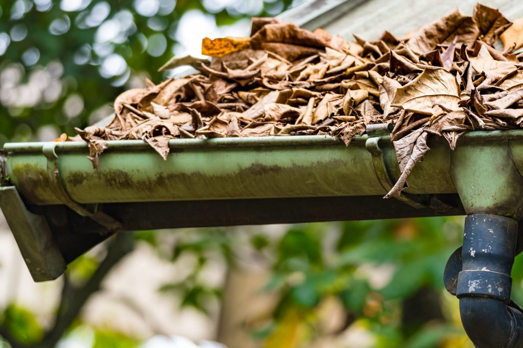 Gutter Cleaning Mistakes